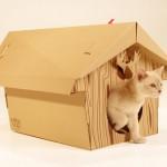 Idea regalo per Natale: lo chalet per gatti