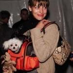 Milla Jovovich: bellezza, musica e cani