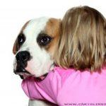 Bambina sopravvive al freddo grazie al suo cane