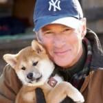 """Richard Gere: """"quanto mi manca il mio cane"""""""