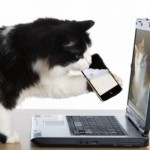 Iscriviti a Petpassion… e vinci un Iphone!