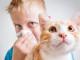allergia-gatto-soluzioni