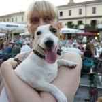 Spiagge e hotel per cani a Jesolo: la guida per la vacanza con animali