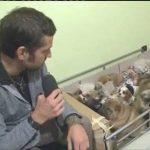 Striscia la notizia: video di Edoardo Stoppa sul traffico di cuccioli dall'est