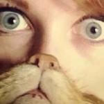 Cat Beard, la moda delle foto con la barba di gatto diventa virale