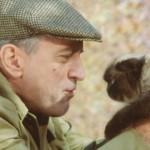 """Un gatto speciale nel cast del film """"Ti presento i miei"""""""