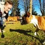 Storia di Duncan, il cucciolo di Boxer con due zampe [video]