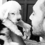 Poldo: foto-storia di un Bobtail da cucciolo a gigante buono