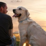 Somiglianza cane-uomo: osservando il cane si scopre la personalità del proprietario