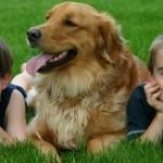 Cani e bambini: le regole per una corretta relazione