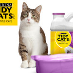Lettiera per gatti: Tidy Cats Dual Power presenta una formula innovativa