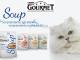 soup-gourmet-v4