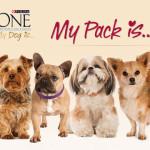 Personalizza il pack con la foto del tuo cane e vinci una fornitura My Dog is…!