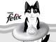 gatto-felix-estate