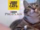 gatto-proplan-tidycats