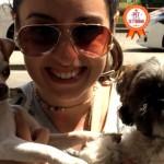 Foto e video di uno shih-tzu e di un chihuahua, due cani amati come figli