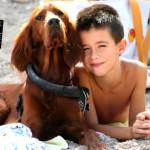 Il bambino e il cane: cosa fare prima di farli conoscere
