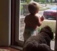 Bimbo e cane - video virale