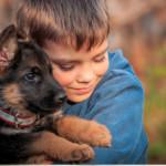 Il bambino e il pastore tedesco che non lo dimentica