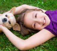 bambini-animali-stress