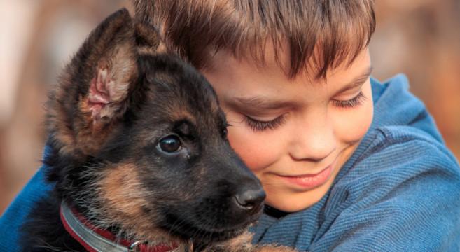Pet therapy all 39 ospedale per bambini di barcellona una for Una storia ospita vicino a me