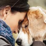 Perché i cani vivono meno dell'uomo? La storia commovente del cane Belker…