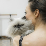 Molte donne preferiscono cane e gatto… al partner! [video]