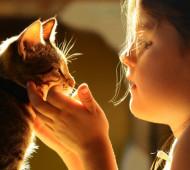 animali-bambini-autistici