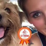 Storia dell'adozione di una cagnolona stupenda: Sophie
