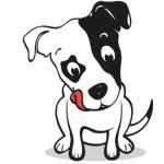 Partecipa al test, puoi vincere 10 forniture per cani di piccola taglia!