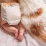 Gatti e neonati: crescere insieme si può! [video]