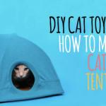Crea una cuccia fai da te per il tuo gatto [video guida]