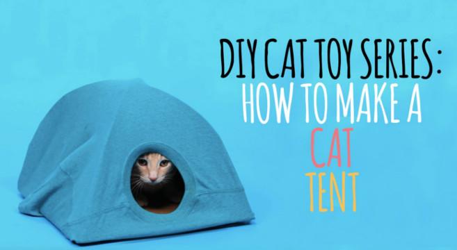 Video tutorial cuccia faidate per il gatto petpassion blog - Cuccia per gatti da esterno fai da te ...