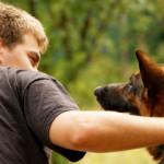 Parli in pubblico con cane e gatto?