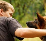 parlare-cane