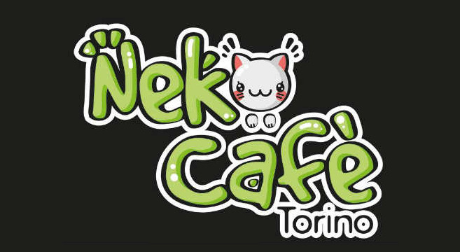 Il caffè-ristorante di Torino dove vivono 9 gatti