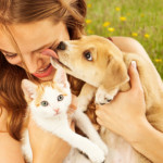 Tempo libero con cani e gatti: scopri le location pet-friendly!