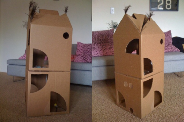 Creare una casetta per gatti in cartone petpassion blog for Piccoli piani casa castello