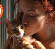 Storia gattino amore