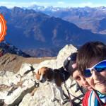 La storia del beagle Zeus, il cane con la passione per la corsa e la camminata in montagna