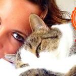 Storia del gatto trovatello che mi ha cambiato la vita