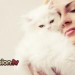 5 modi per capire se il tuo gatto ti vuole bene