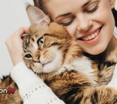 gatto-in-braccio