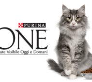 concorso-purina-one-gatto