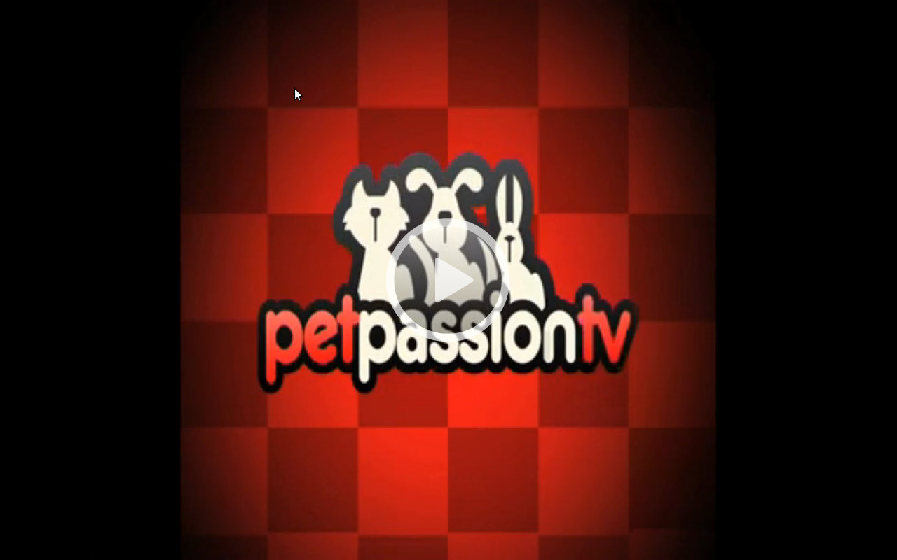 PetPassion News