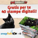 40 stampe gratis per il tuo gatto!