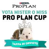 Vota il cucciolo PRO PLAN 2013 - Orvieto