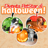 Diventa PetStar di Halloween