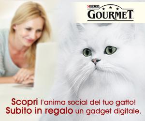 Test gatto Gourmet