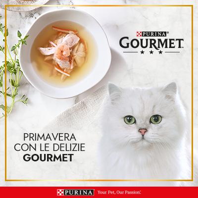 Primavera con le delizie Gourmet
